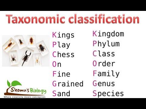 NCERT biology class 11 Taxonomic classification CBSE class 11