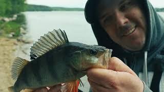 Озеро Суходольское Рыбалка на Вуоксе Лосево протока Жарим рыбу Отдых Природа Поводковые оснастки