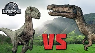 VELOCIRAPTOR VS BARYONYX! ►BATTLE!◄ - Jurassic World Evolution!