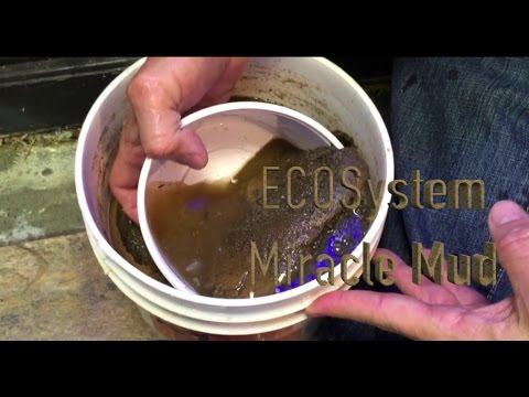 Mike Paletta on ECOsystem Miracle Mud - ReefKeeping Video Podcast by AmericanReef