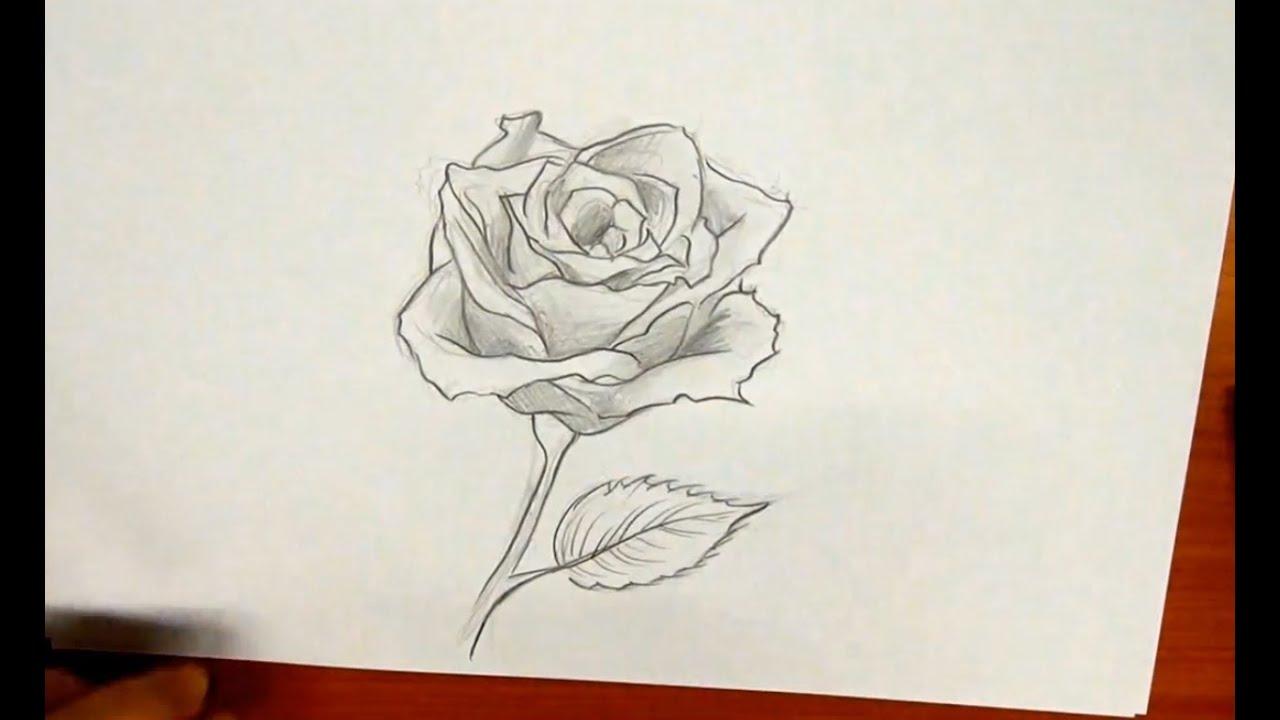 Desenhos Tumblr De Mão Estalando Como Fazer: Como Desenhar Uma Rosa