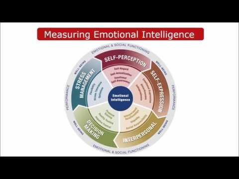 An Assessment of Emotional Intelligence