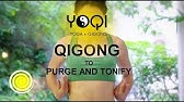 Daily Qigong & Louhan Patting - Best Qigong for Beginners