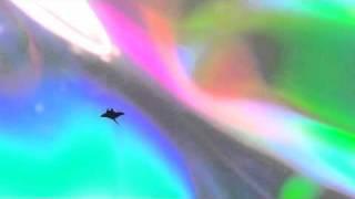 """Ackky """"Mantaray feat. 9dw"""" PV"""