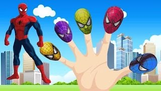 finger family spiderman   spider man finger family songs   kids songs   popular nursery rhymes