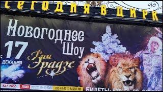 И не только о еде!!!Город!!!Цирк на Фонтанке!!!Цирковое шоу Гии Эрадзе!!!Зимняя сказка!!!