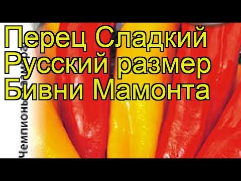 Перец сладкий Бивни Мамонта. Краткий обзор, описание характеристик cápsicum ánnuum | описание | сладкий | мамонта | краткий | перец | обзор | бивни | psicum | nnuum | c