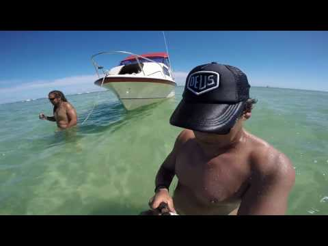 Moreton Bay and Island Snapper Fishing