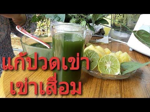 สูตรสมุนไพรแก้ปวดเข่า เข่าเสื่อม ปวดข้อ(Thai Herb)