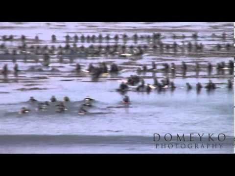 Orignal Funeral Footage Jay Moriarity
