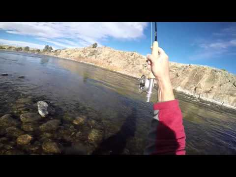Fishing the North Platte River in Wyoming