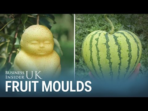 These fruit moulds let you grow your own heart-shaped watermelons or Buddha-shaped pears