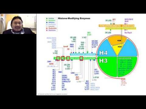 Richard Lee - Refinement of epigenetic approaches in neuroscience