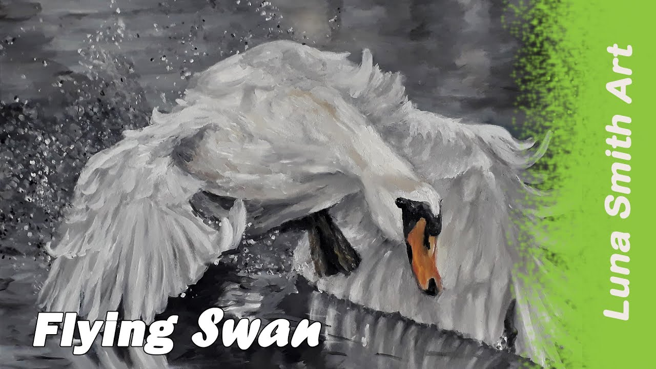 Swan by Luna Smith