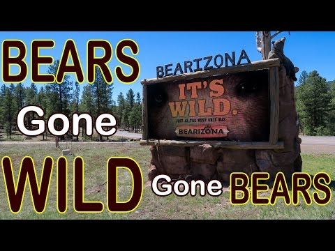 Bearizona Wild Animal Park in Williams Arizona ~ Full Time RV Travel