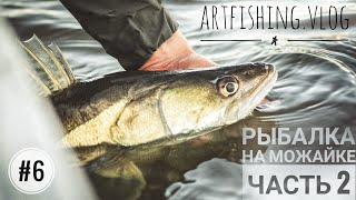 Осенняя рыбалка на Можайском вдхр. Часть 2. Artfishing.Vlog #6