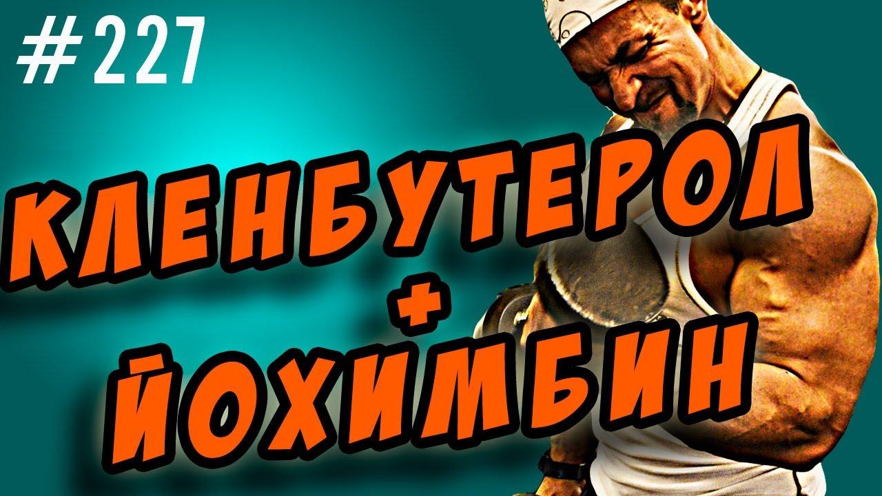 Купить кленбутерол софарма в интернет-аптеке в москве по акции по цене от ⭐ 91 руб. ⭐ инструкция по применению кленбутерол софарма товар.