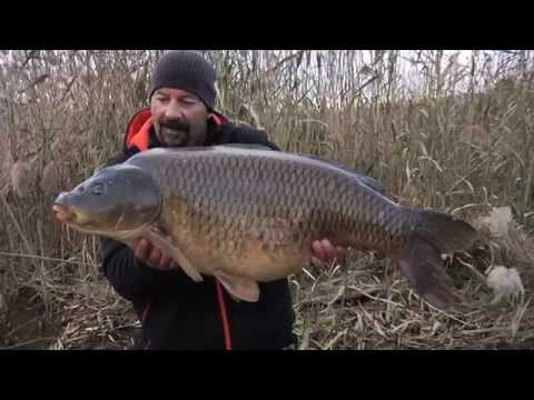 Italian Fishing TV - Lineaeffe - Carp&specialist 24 Ore