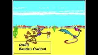 A Road Runner Cartoon made using Bugs Bunny