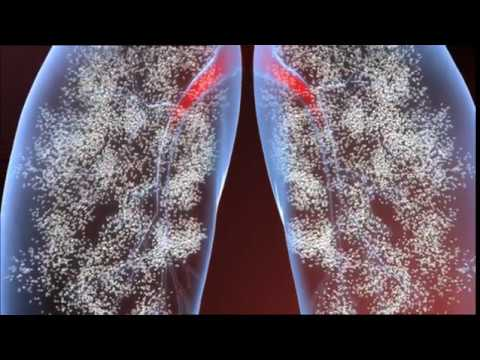 Race Against the Killer Flu (Documentary) ♦NatGeo♦