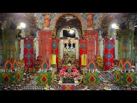 New Year Celebration with HH Mahant Swami Maharaj, Gondal, India