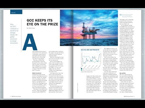 MEED Business Review |  Why the region is still investing in oil and gas + free | October 2017