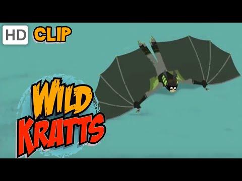 Wild Kratts - Follow That Bat