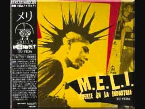 M.E.L.I.-Libertad de expresión