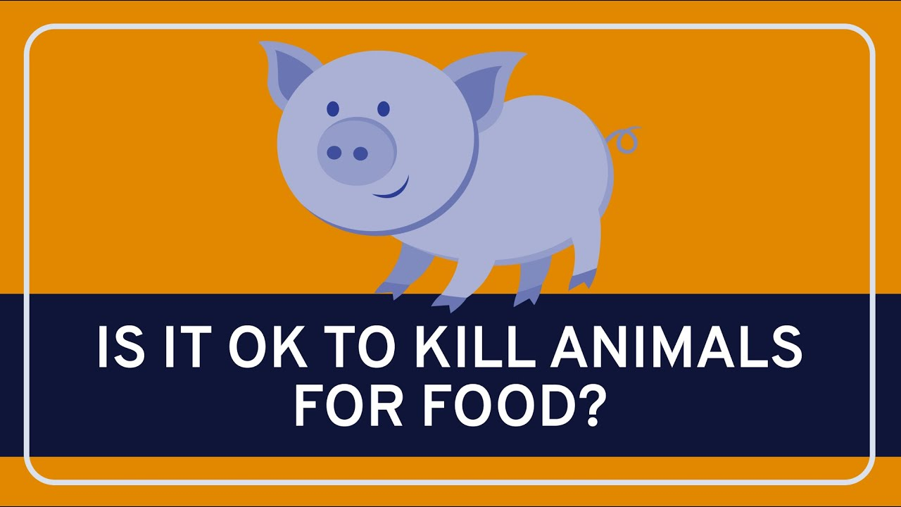 Ethics: Killing Animals for Food (video) | Khan Academy