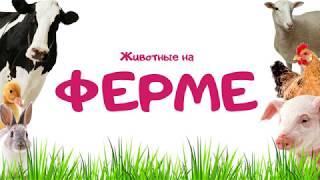Животные на ферме. Познавательное видео для детей.