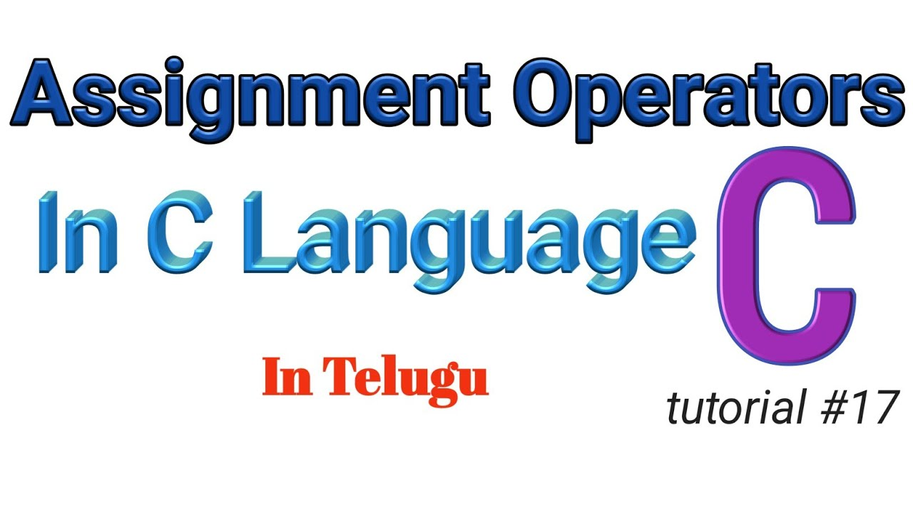 c language assignment