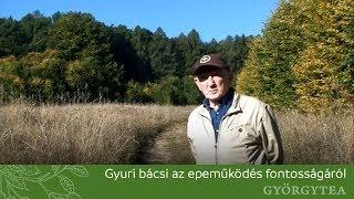 Gyuri bacsi belfereg - oraoazis.hu