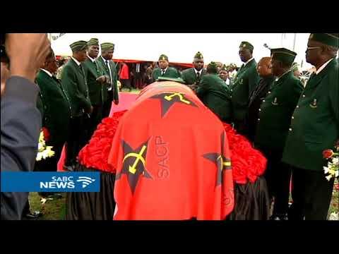 Nzimande says VAT increase is due to looting by the Guptas