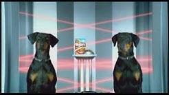 Bakers Complete Heist - Doberman video