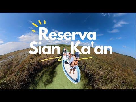 El TESORO escondido de TULUM: Reserva de Sian Ka'an 🐊🌾 ¿COMO LLEGAR? ¿CUÁNTO CUESTA? 🙈🙉