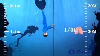 自由潛水耳壓平衡教學影片