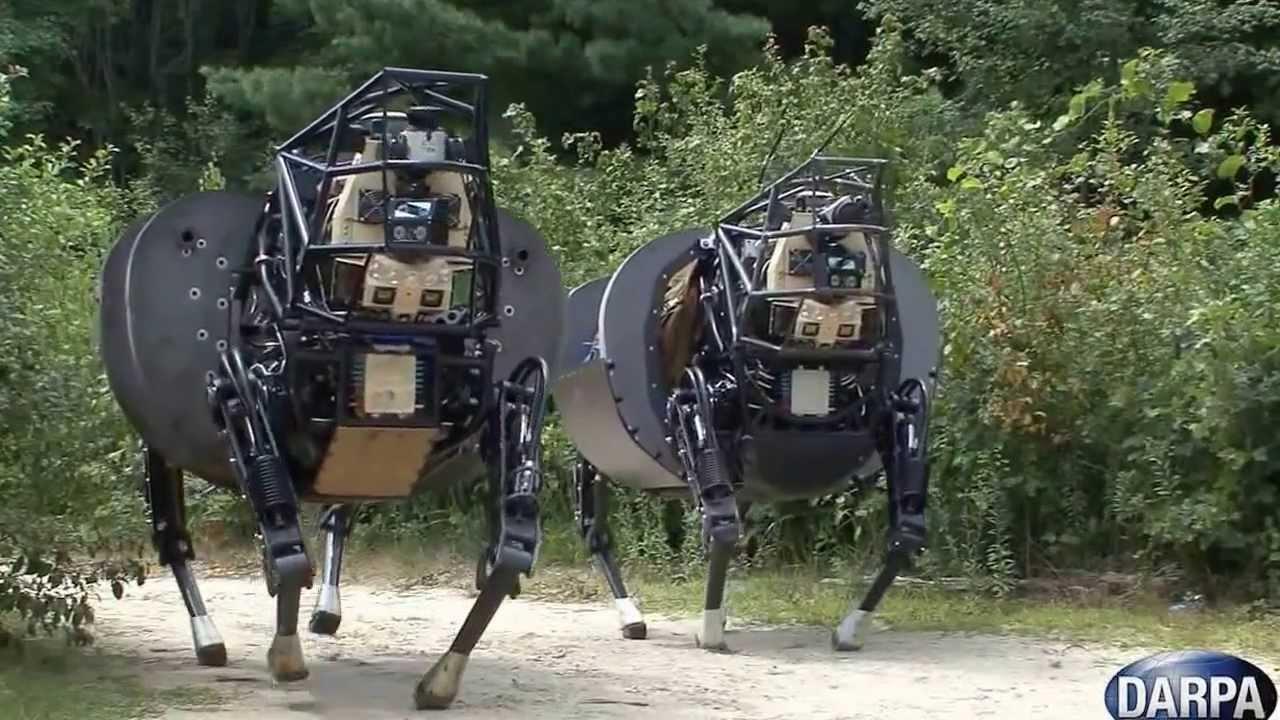 צפו:  הרובוט הכי מצחיק שראיתם בחיים רובוט סוס HD
