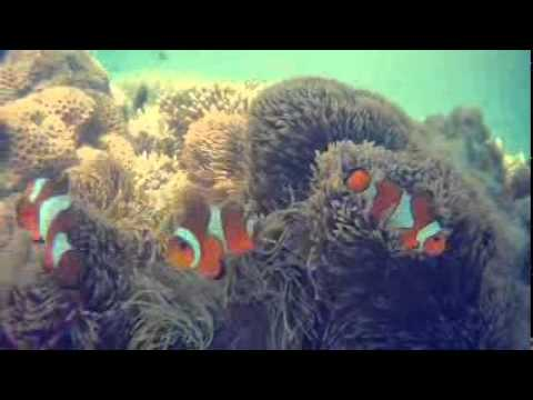 One day trip GILI LABEK-ALOMAMPA SONGENNEP