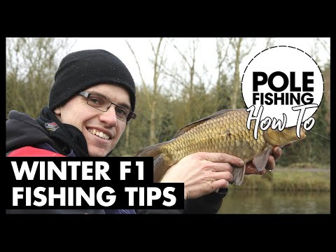 Winter F1 Fishing Tips