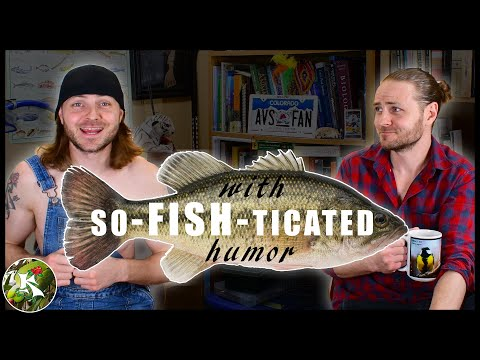 Funny Fish Puns & Jokes! (ft. My Inner Redneck)