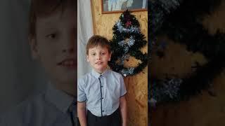Новогоднее чудо Стеквашова Е