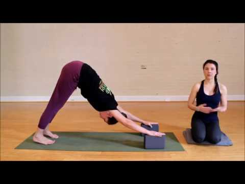 how to step through beginner vinyasa yoga tips