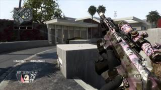 Window Shot Wallbang BO2 Raid