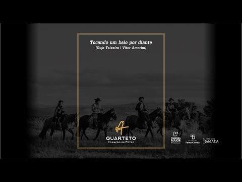 BAIXAR BAIO MUSICA CAVALO