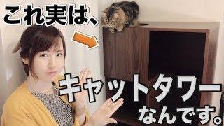 【猫】これ、実はキャットタワーなんです!【スタイリッシュな猫グッズ】