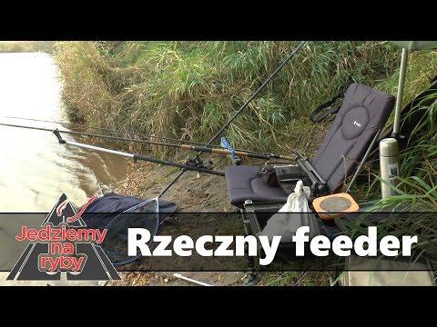 Jesienny feeder - Polowanie na leszcze giganty i rzeczne niespodzianki.