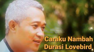 Video Tips Durasi Berkurang and Nambahi Durasinya LOVEBIRD download MP3, 3GP, MP4, WEBM, AVI, FLV Mei 2018