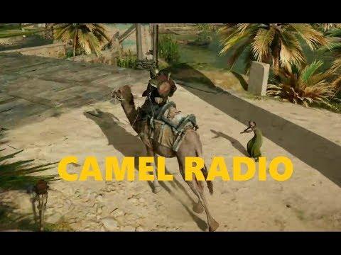 CAMEL RADIO: A Riding Tour of Egypt
