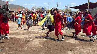 Danza- San Juan Tetelcingo Gro.