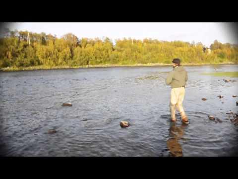 River Neiden 2010
